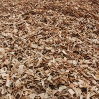 Buy wood chips